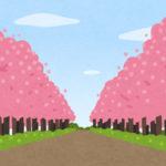 新宿の桜やお花見スポット